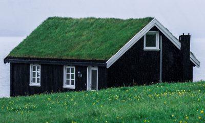 Dom zakupiony za gotówkę z gdyńskiego skupu domów. Na dachu ma trawę, dookoła również jest trawa. Prosty, jedno-piętrowy domek z poddaszem.